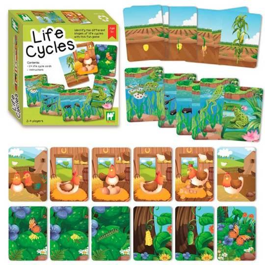 juego-de-mesa-ciclos-de-la-vida3