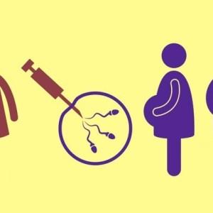 künstliche Befruchtung bei Single Frauen
