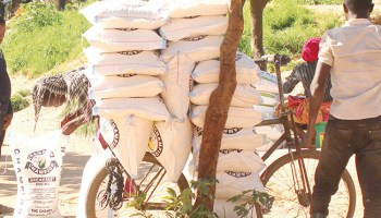 Lusaka retailers 'decline' to reduce mealie meal prices