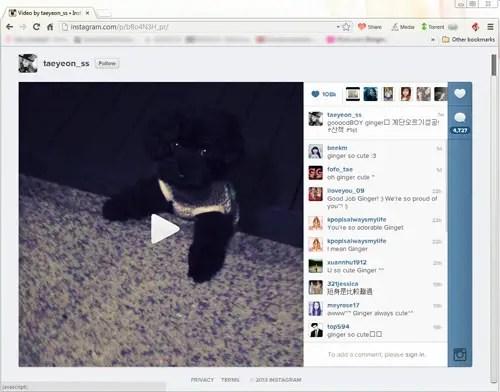 Torch Browser Instagram Video Download