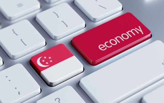 Shocks and Downfalls of Singapore Economy and Their Comeback