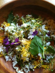 edible flowers - photo: Sarah Lockett