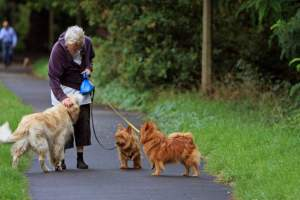 moneymagpie_money-making-ideas-for-the-over-60s_senior-lady-dog-walker
