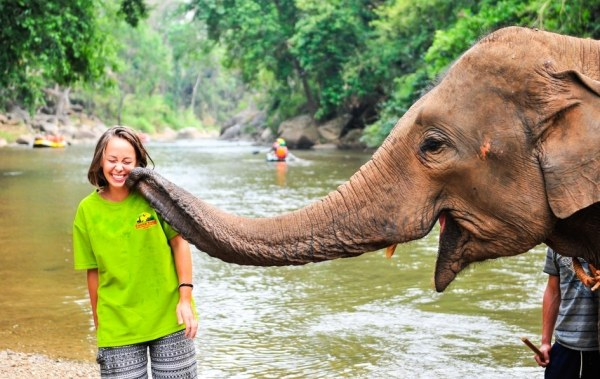 Elephant touching volunteers face with trunk