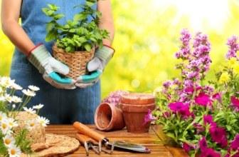 free garden equipment