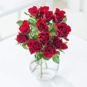 a bunch of roses which you can get cheaply
