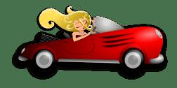 moneymagpie_car2