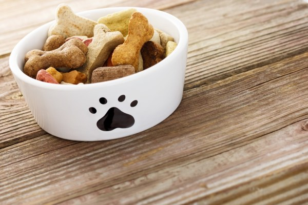Bowl of dog biscuits