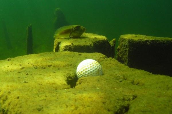 Golf ball at bottom of lake
