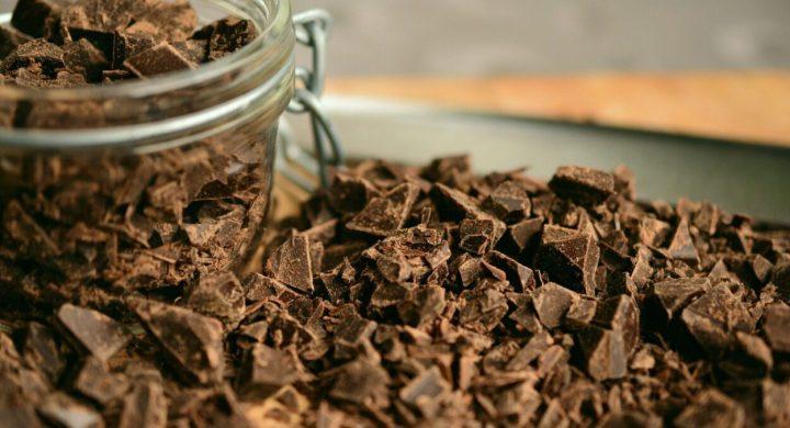chocolate taste tester