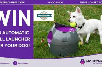 Win an Automatic Ball Launcher for your dog