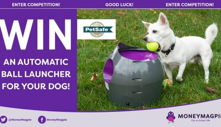 Win an Automatic Ball Launcher for your...