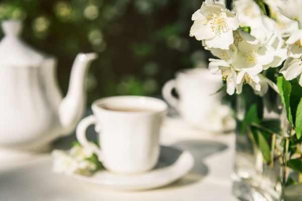 Garden and tea service