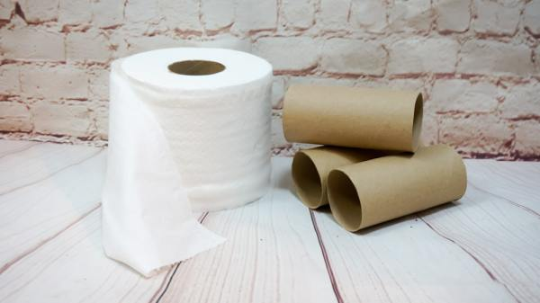 Toilet roll and empty tubes