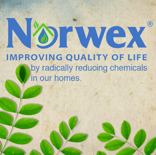 norwex-home-business
