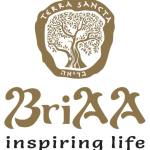 BriAA Skincare Home Business Opportunity