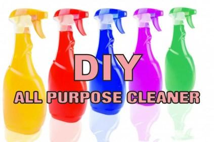 DIY All Purpose Chemical Free Cleaner