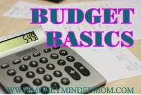 Budget Basics