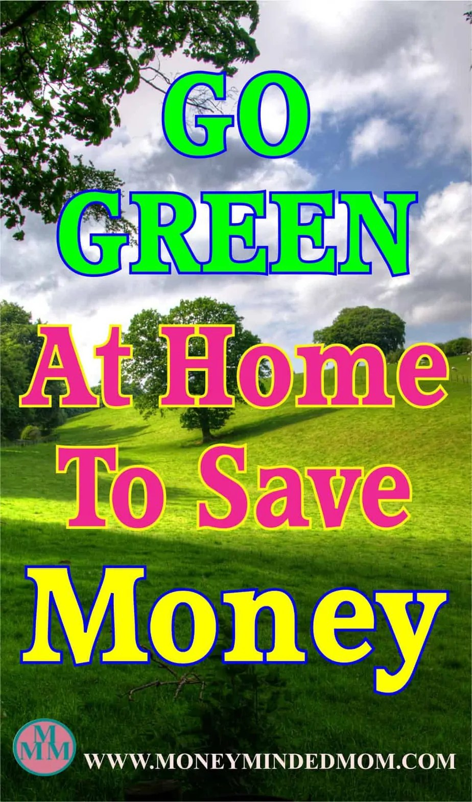 Go Green at Home and Save Money