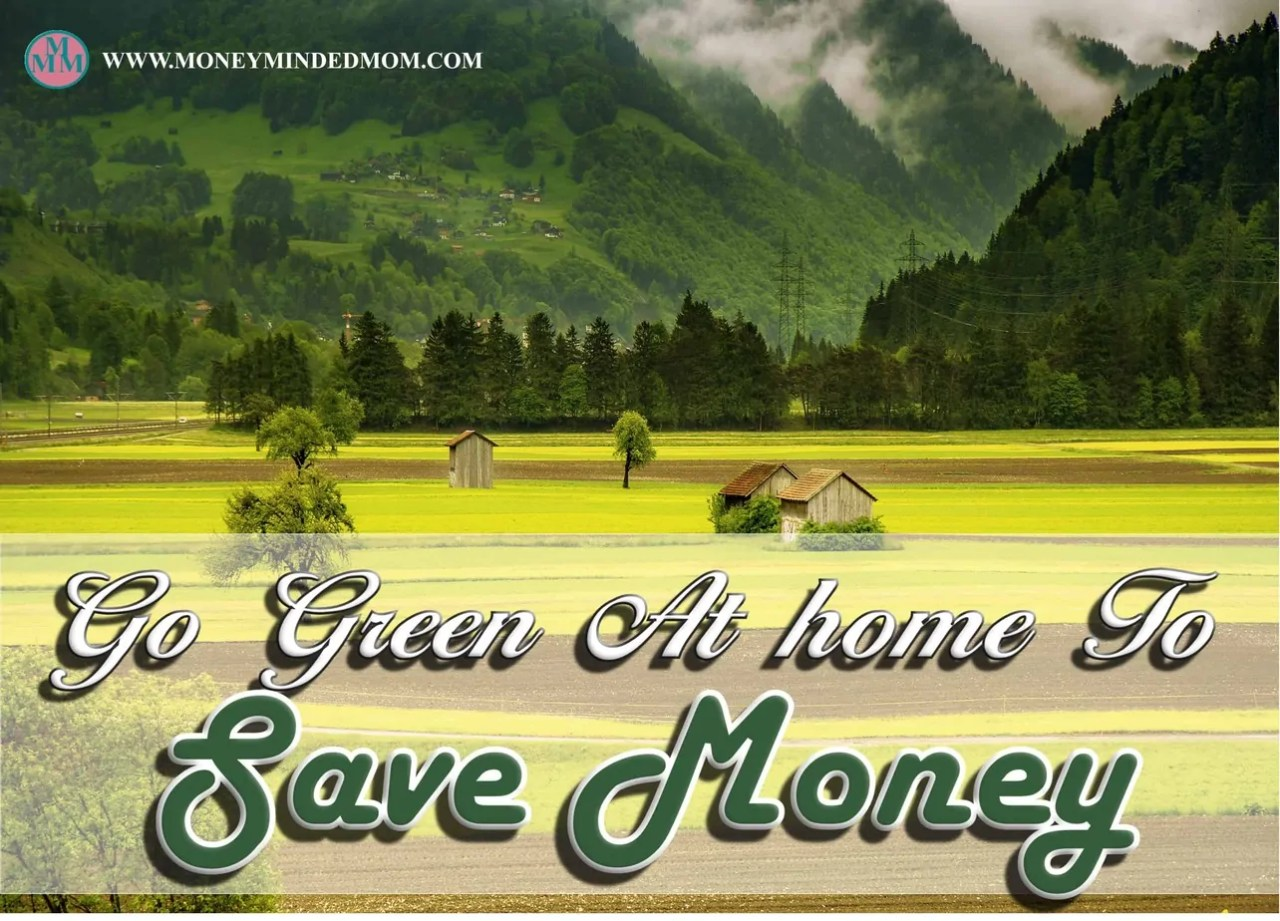 Go Green at Home to Save Money ~ Going green not only helps our environment. it also helps us save money. Read on how to save money by going green