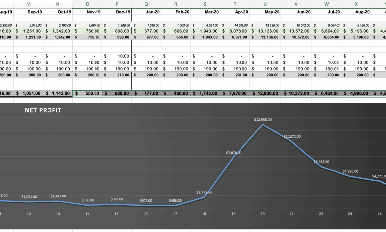Profit and Loss Statement For Website