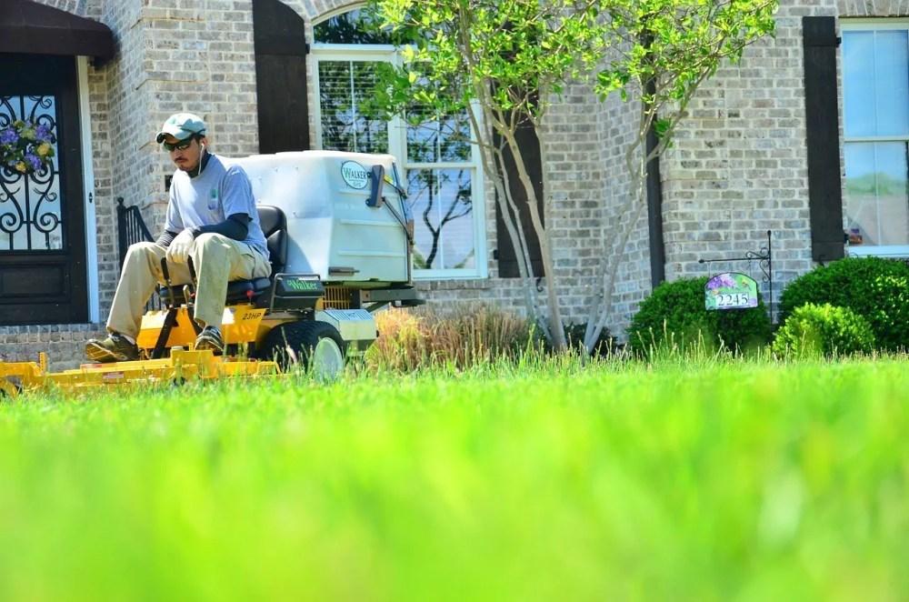 fall lawn care, fertilize