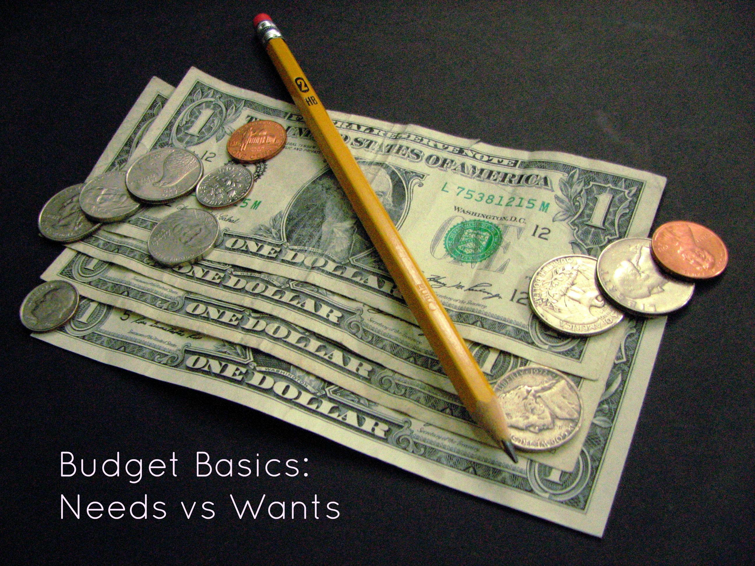 Budget Basics Needs Vs Wants