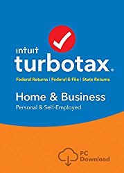 turbotax-home-and-business