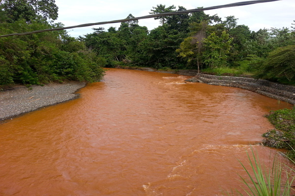 Aliran sngai dari dalam hutan yang digali, air berubah warna. Apakah ini yang dibilang pejabat lingkungan hidup Morowali, sebagai semua sudah memenuhi aturan? Foto: Sapariah Saturi