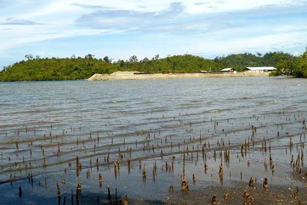 Pemandangan kantor Bintang Delapan  dari pesisir Desa Fatufia, Kecamatan Bahodopi. Tampak kawasan pesisir yang sudah ditimbun perusahaan  untuk pembangunan fasilitas perusahaan. Foto: Christopel Paino