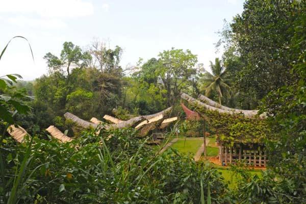 Rumah-rumah adat yang menggunakan atas dan beberapa bagian dari bambu. Bambu menjadi bahan penting bagi masyarakat adat di sini. Foto: Eko Rusdianto