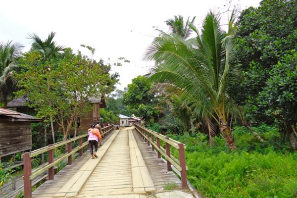 Di wilayah adat Tumbang Bahanei ini, hutan terbagi dalam beberapa bagian, ada hutan keramat yang tak boleh disentuh, hutan cadangan, hutan tempat berladang sampai hutan wisata. Foto: Indra Nugraha