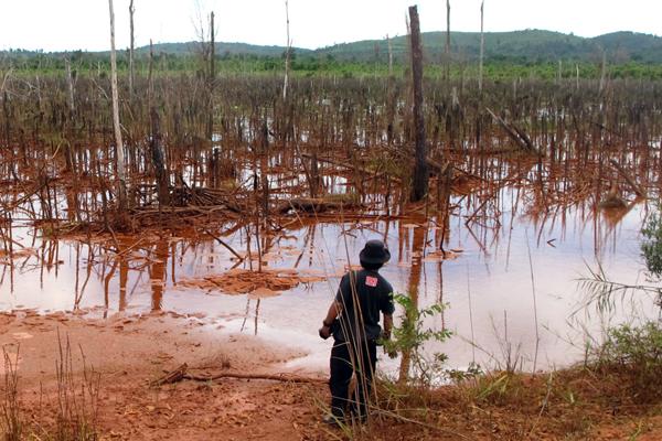 Beginilah kondisi di sekitar kolam penampungan limbah milik PT. HPAM. Foto: Andi Fachrizal