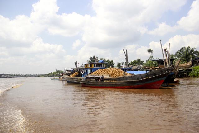 Sungai Gaung, menjadi urat nadi  ekonomi warga Pungkat. Foto:  Walhi  Riau