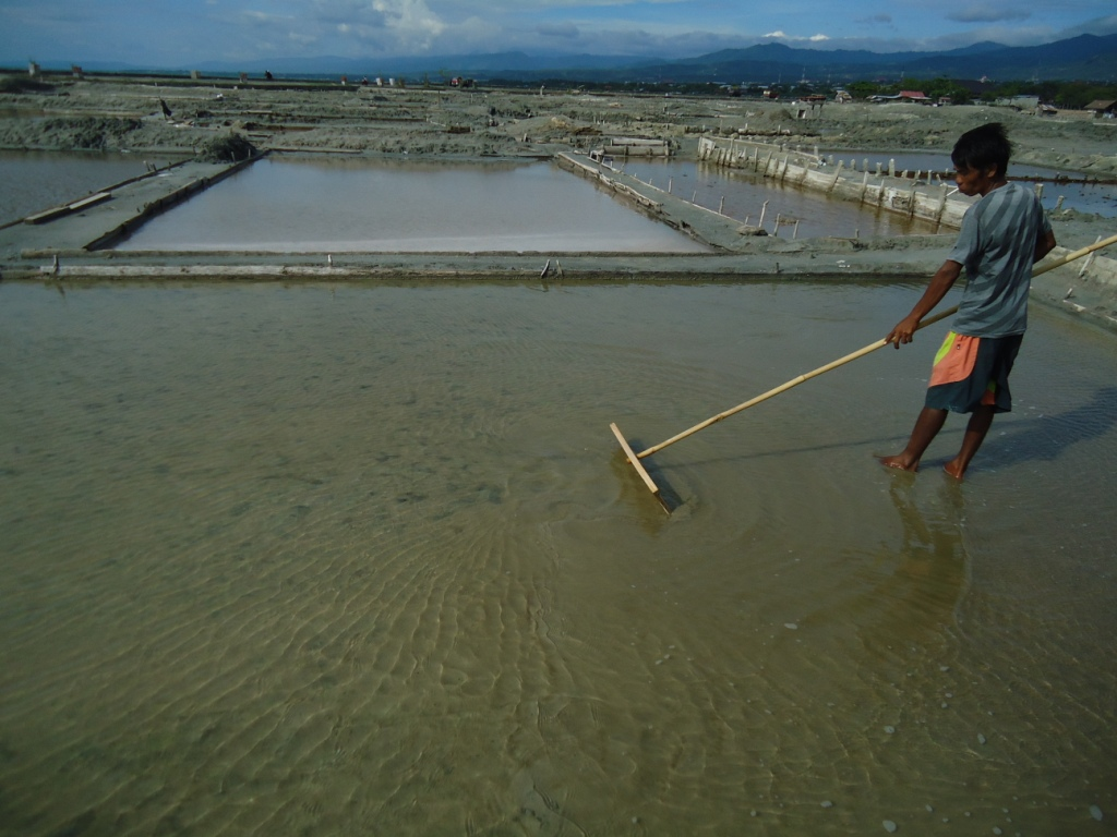 Badrung, seorang petani garam di Teluk Palu, Sulawesi Tengah sedang menggarap lahannya. Petani garam khawatir reklamasi di Teluk Palu  mengganggu usaha mereka. Foto : Themmy Doaly