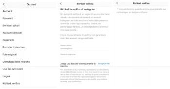 Verificare Account Instagram