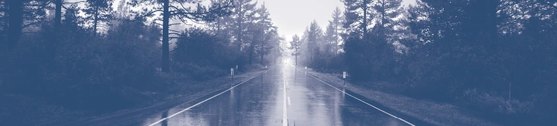 A rainy road, lined by trees, leading to a community