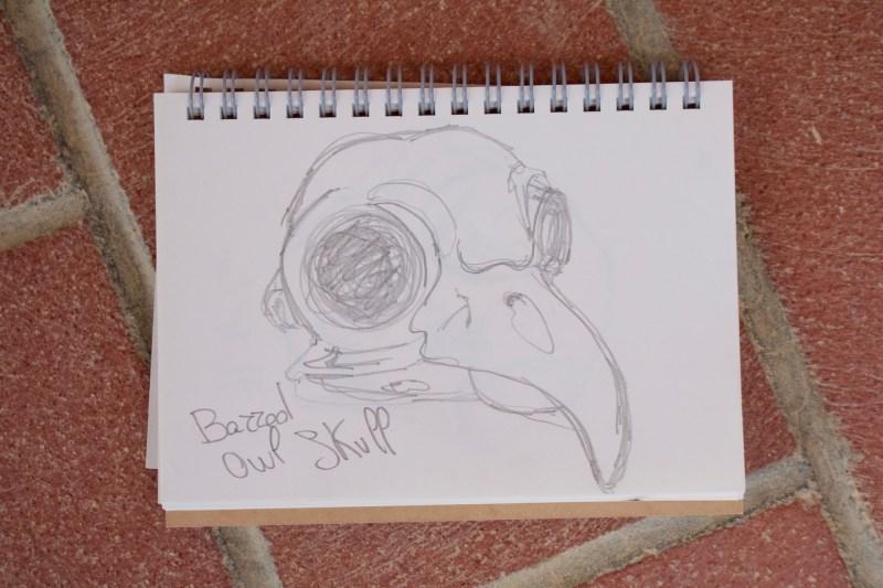Sketchbook | Monica Lerda | 8