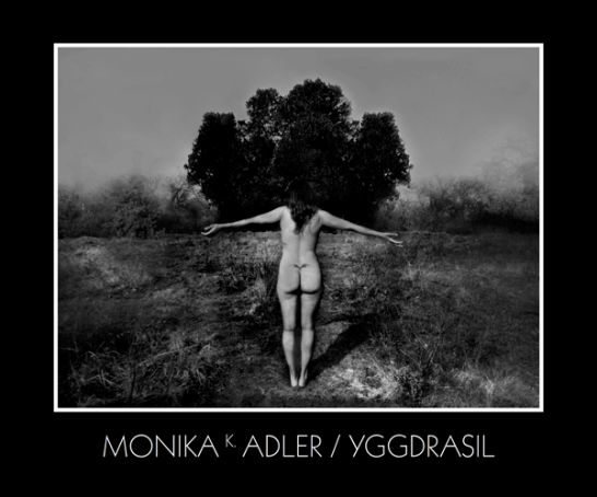 Monika K. Adler Yggdrasil, 2015, Publication, Book, exhibition catalogue
