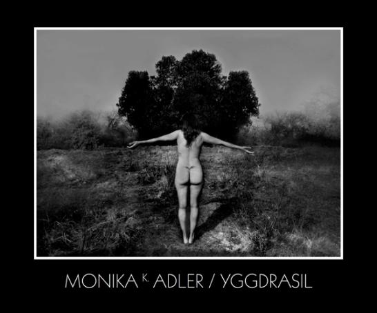Monika K. Adler Yggdrasil, 2015, Publication, Book, exhibition catalogue