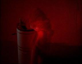 Monika K. Adler, Sacred Flesh, 2003