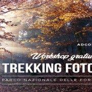 Domenica 18 ottobre 2020 con Adcom e Sony nel Parco delle Foreste Casentinesi