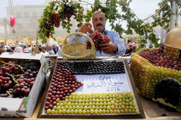 HEBRÓN, PALESTINA: Bandera palestina formada con uvas de distintos colores duraante el Festival de la Uva Palestina, en el pueblo de Halhoul.