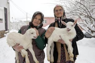 IZMIR, TURQUÍA: Copitos de nieve