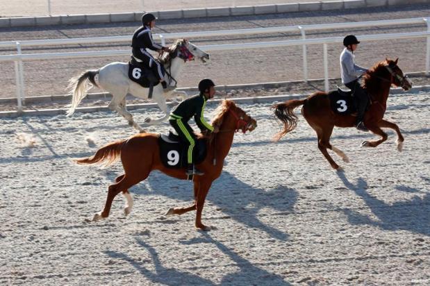 ERBIL, IRAK- ¡Cabalga como el viento! 9 caballos árabes y 9 ingleses participan en una carrera en un hipódromo a 10 kilómetros del centro de la ciudad de Erbil.