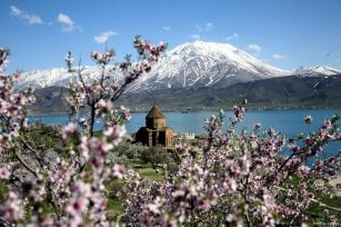 VAN, TURQUÍA - ¡La primavera llega a la histórica isla de Akdamar!
