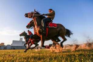 Gaza, GAZA- Los jinetes de caballos en Gaza no pueden participar en competiciones internacionales debido al asedio israelí