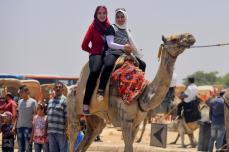 El Cairo, Egipto - Una vuelta en camello alrededor de las pirámides