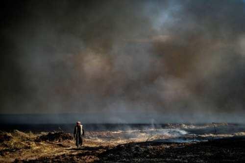 El régimen sirio incendia campos de trigo en Idlib