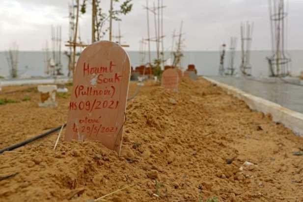 """""""Jardin d'Afrique"""", o Jardín de África, un cementerio en el sur de Túnez para los migrantes que se ahogaron cruzando el Mediterráneo con la esperanza de una vida mejor en Europa, el 1 de junio de 2021 en la ciudad portuaria de Zarzis, cerca de la frontera con Libia [FATHI NASRI/AFP vía Getty Images]."""